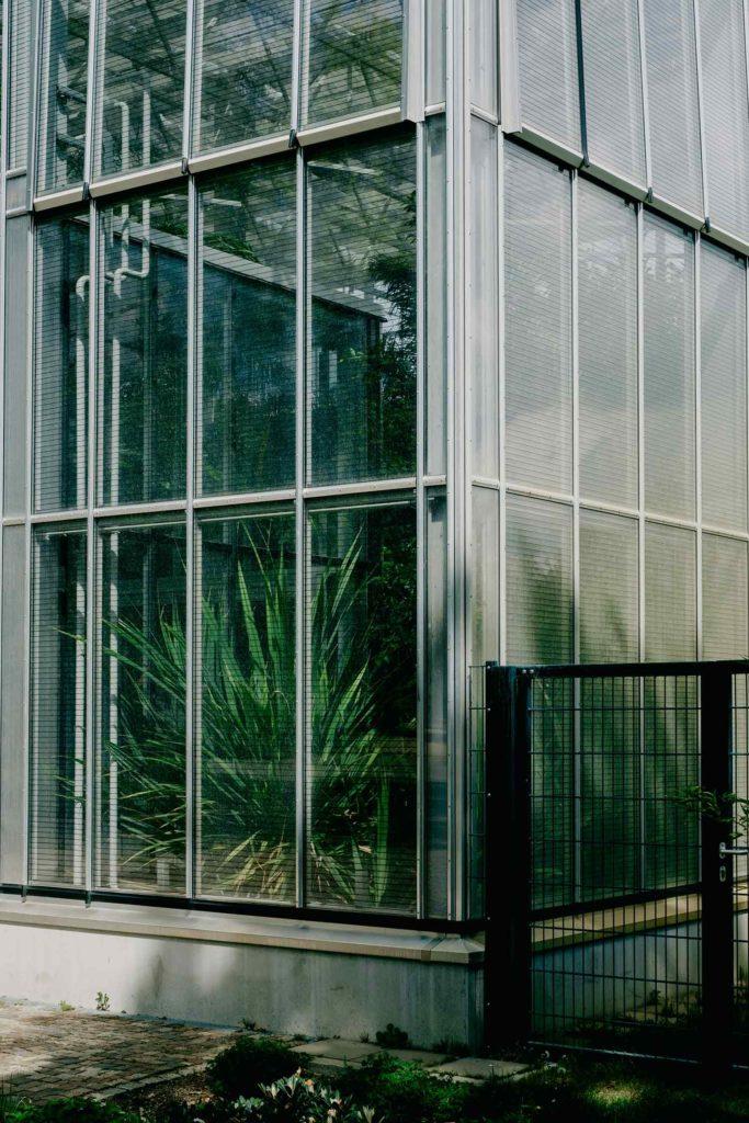 Vogelschutzfolie an einer Glasfassade