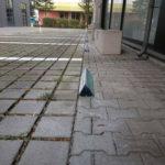 Parkbegrenzung in Rüsselsheim inkl. Beschritung und Montage vor Ort